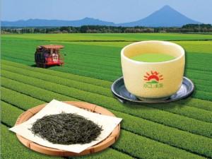 茶ブランドポスター(横)
