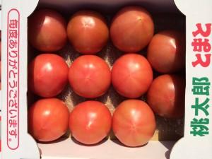 うまみの詰まったトマト
